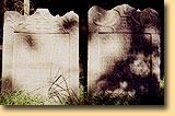 židovský_hřbitov